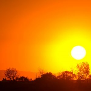 Human-Induced Climate Change and Heat-Related Mortality